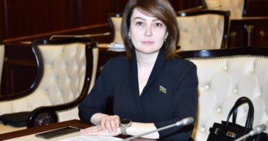 Deputat Jalə Əhmədova: Avropa İttifaqı bizim üçün yaxın tərəfdaşdır